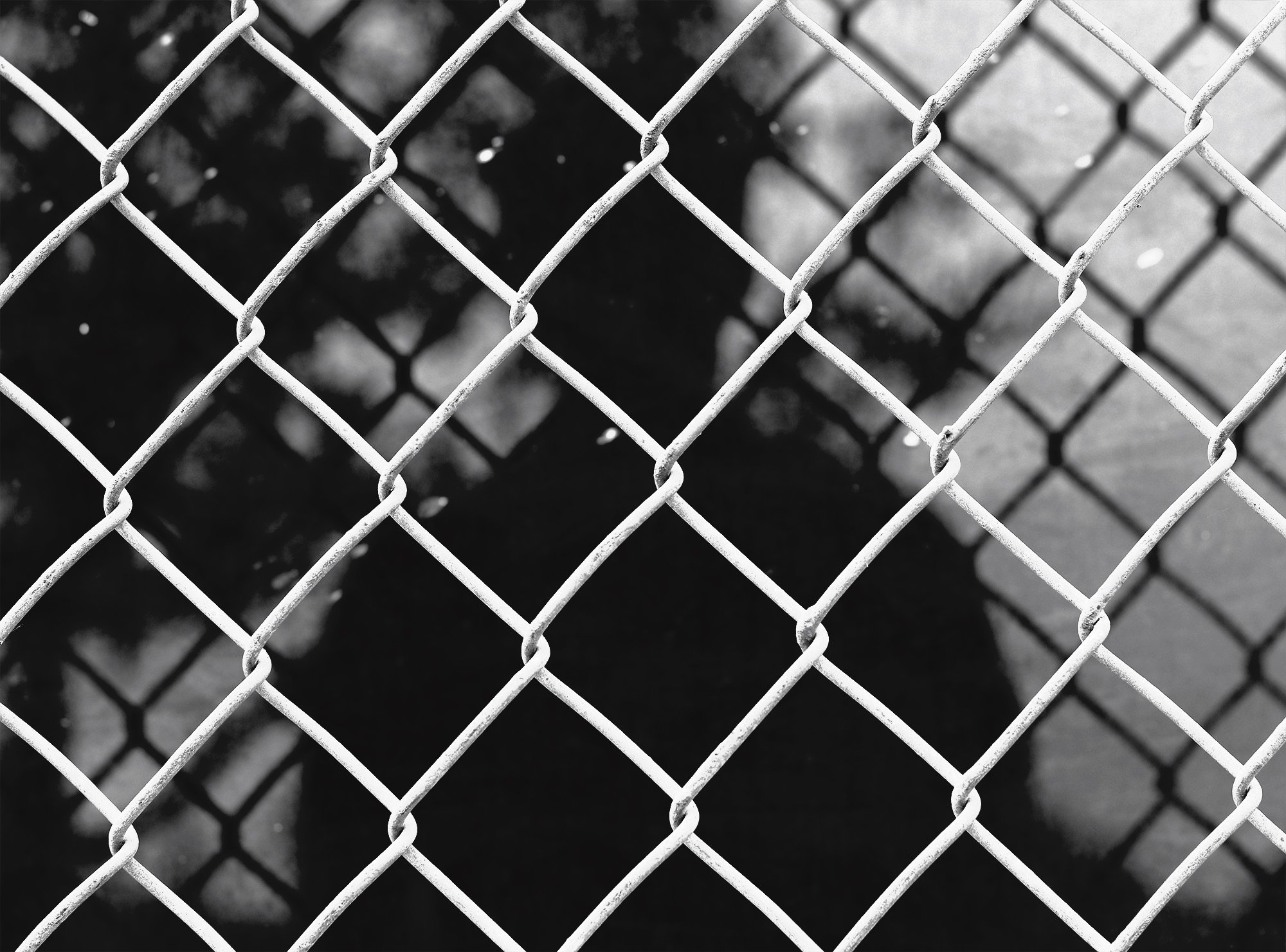 Don't Fence Me In - ©Jacob Clayton